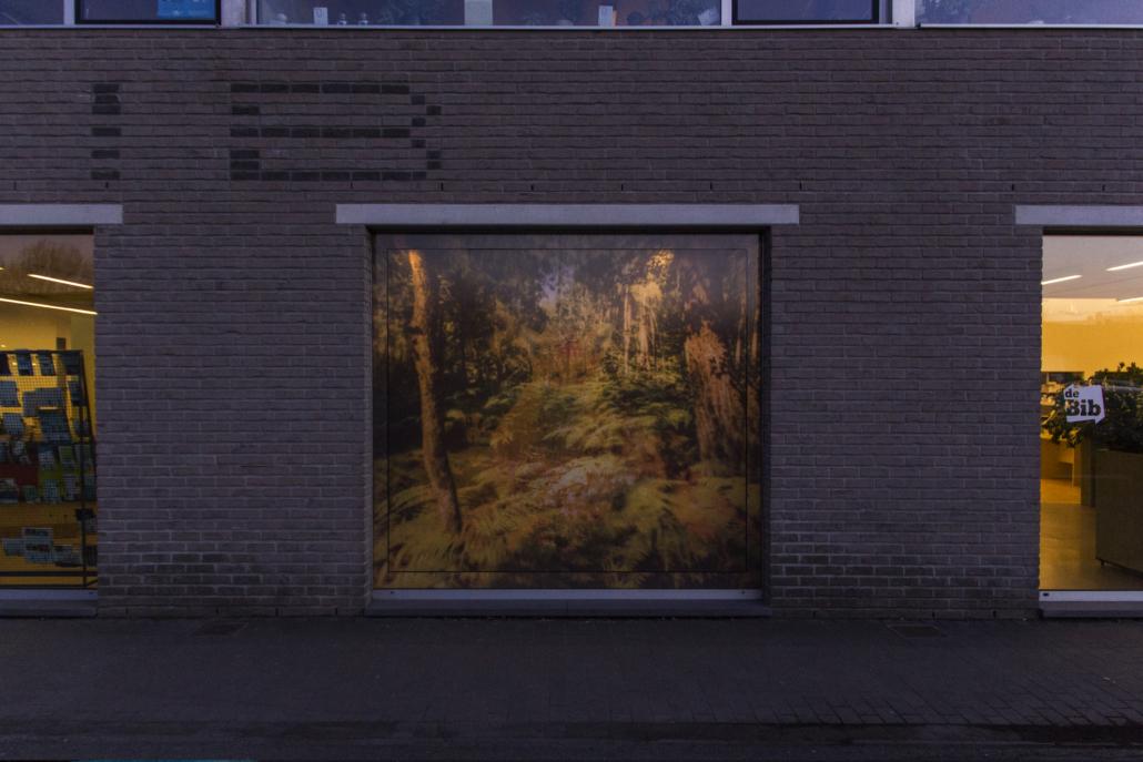 20180219 BibBeveren DeDans sunset animation 10 // © Pieter De Decker