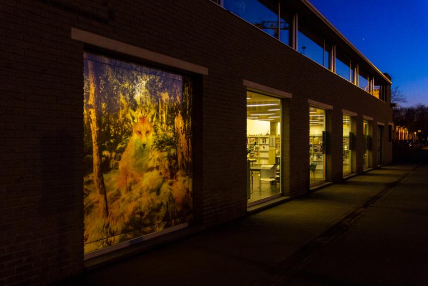20180319 BibBeveren TerVesten Sunset 0391a // © Pieter De Decker