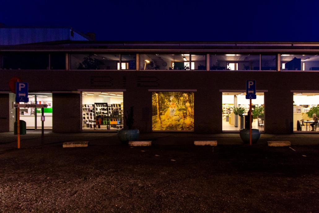 20180319 BibBeveren TerVesten Sunset 0395a // © Pieter De Decker