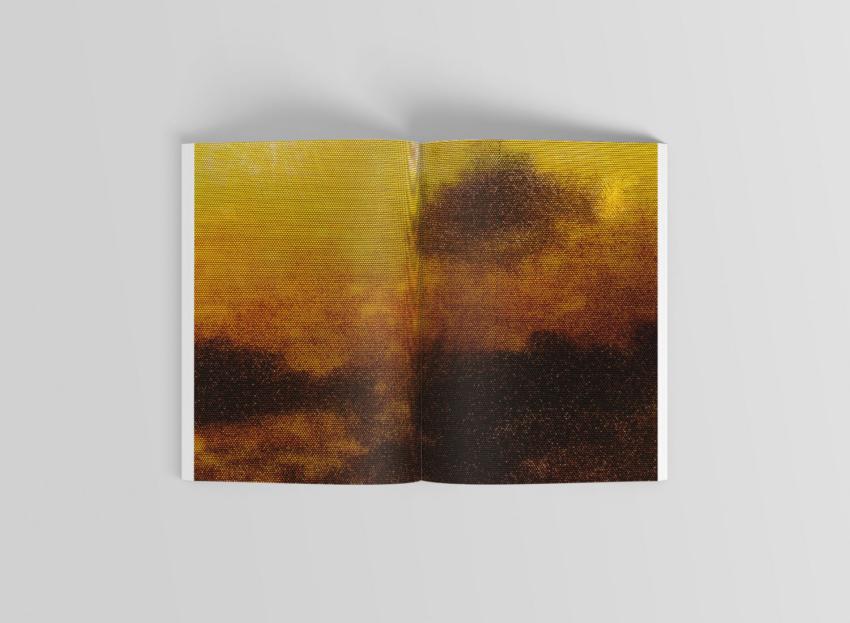 2018 Rescaping The Landscape Frames & Windowprints // © Pieter De Decker