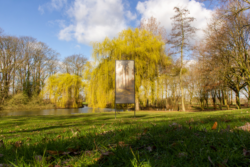 2019.03.08 Opdorp 8054a - Treescapes Hapert // © Pieter De Decker