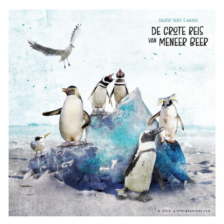 2019 MeneerBeer Tieret Walrus pinguins web
