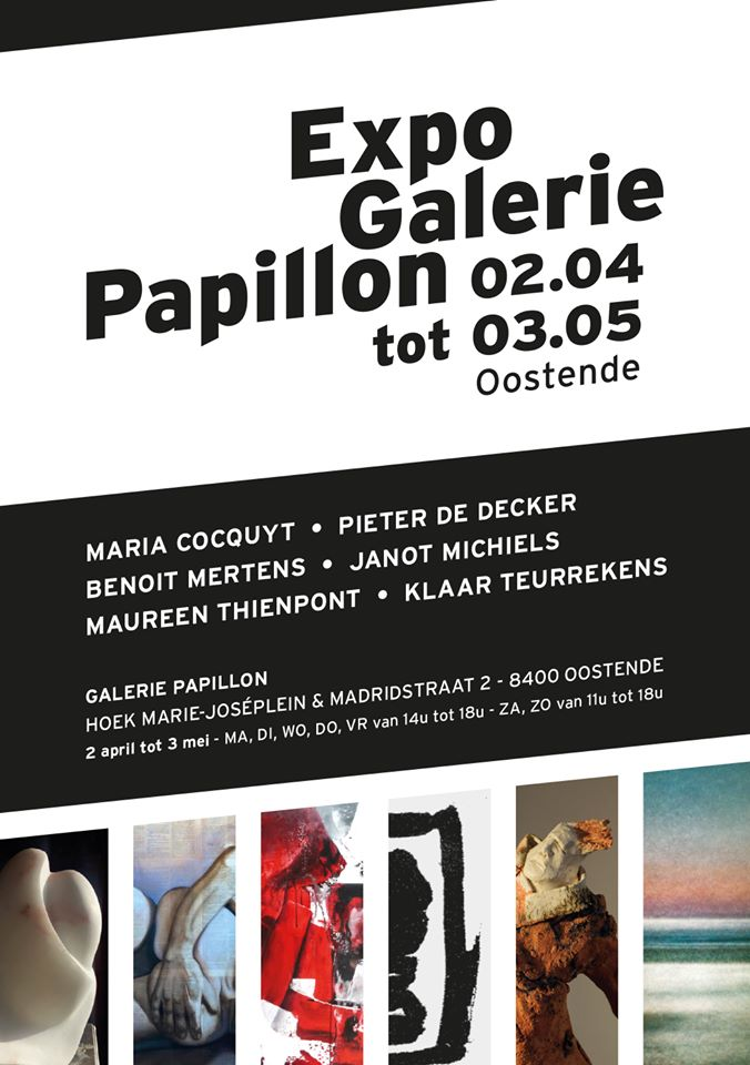 2020 ExpoGaleriePapillon pieterdedecker