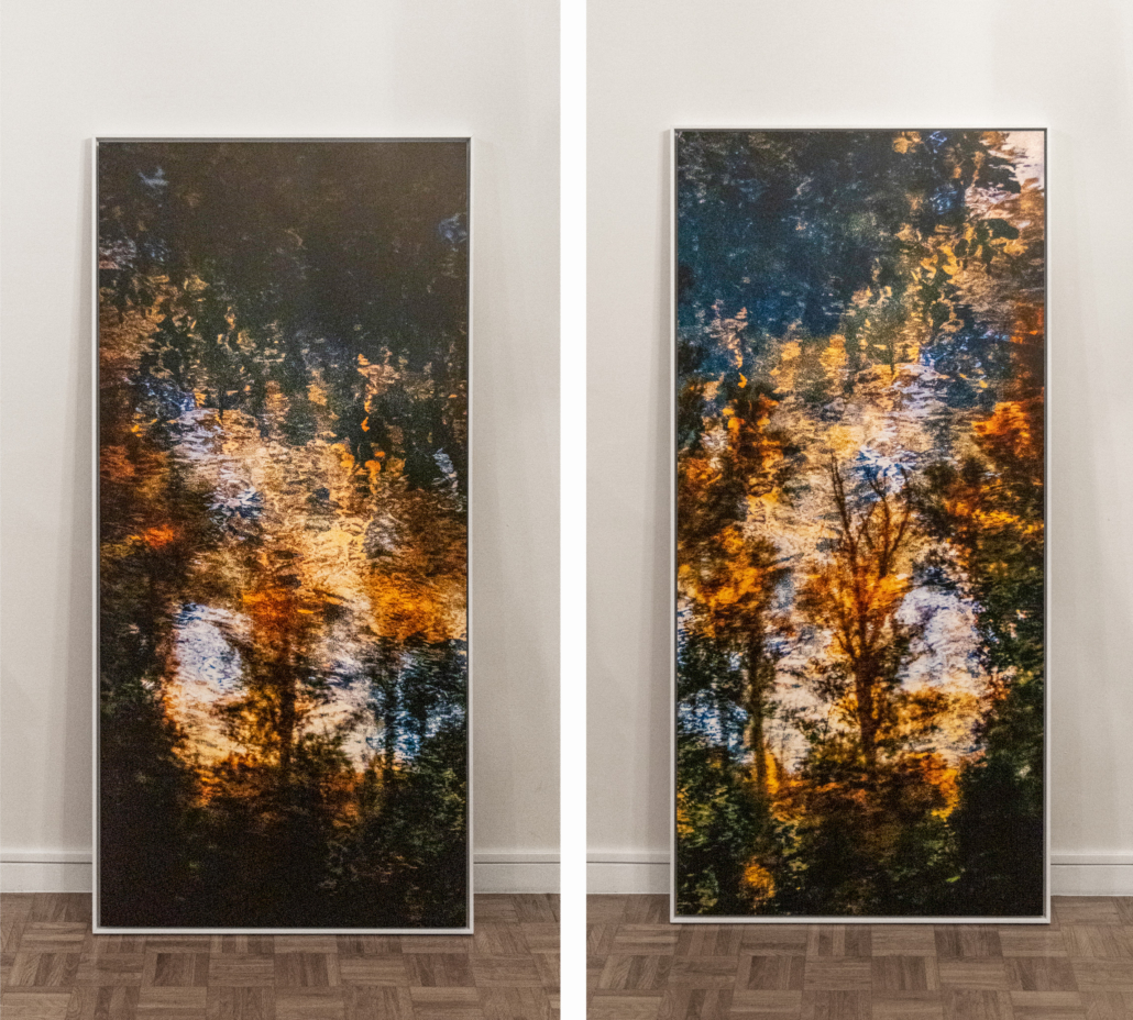 20200228 Treescapevariations diptych b